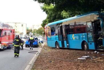 Bus von Global kracht in Las Palmas in einen Baum, Fahrer verletzt