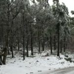 Der kälteste Tag des Jahres gestern brachte Schnee und Minusgrade