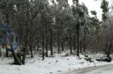 Ausschreibung: Bei Schneefall sollen die Berge per Schranke gesperrt werden