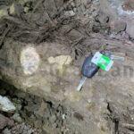 Fossiler Baumstamm stoppt Bauarbeiten des Guguillo-Tunnels an der neuen Schnellstraße nach La Aldea