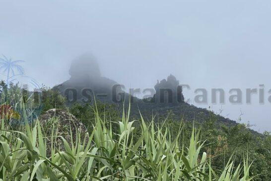 Berge im Nebel (Tajinaste Azul)