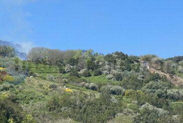 Kleiner Waldbrand in Valleseco beschädigt 2.000 Quadratmeter (mit Video)