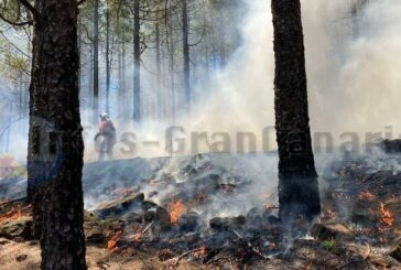 Gezielte Brände in den Bergen, um Waldbrände zu verhindern
