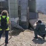 2 Personen in Mogán wegen Tiermissbrauch in fortgeschrittenem Stadium verhaftet