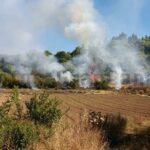 Kleiner Waldbrand in Valleseco – Kaum noch aktiv!