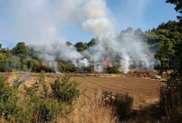 Kleiner Waldbrand in Valleseco - Kaum noch aktiv!