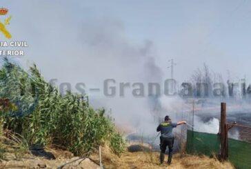 Kleiner Steppenbrand in Gáldar durch Hilfe der Anwohner gelöscht